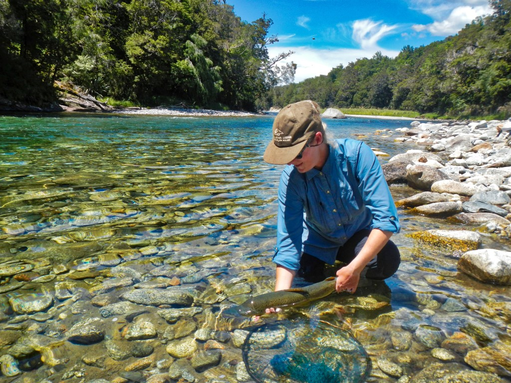 Catch and release fishing New Zealand
